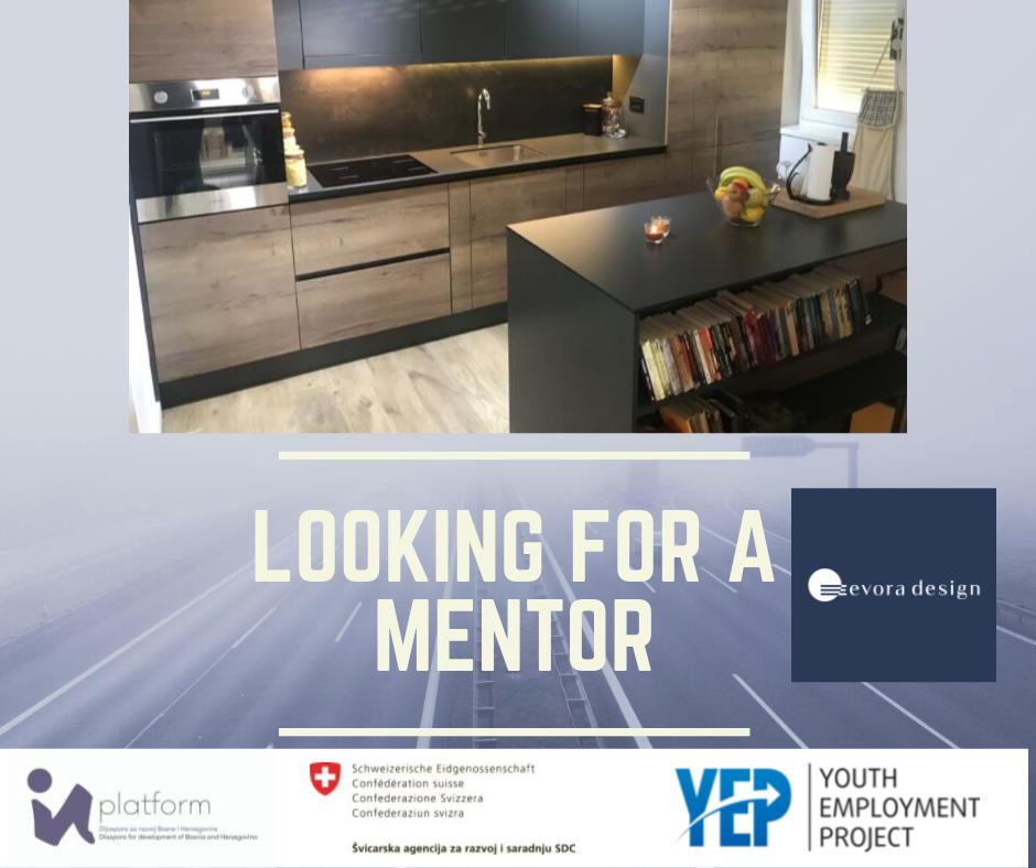 1  Yep Business Ideas Incubator  U2013 Mentoring Program Impakt
